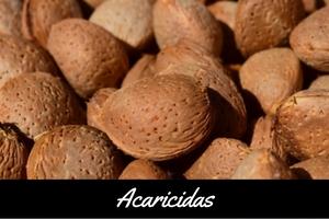 Insecticidas Almendro Alcañiz Teruel