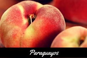 Paraguayo